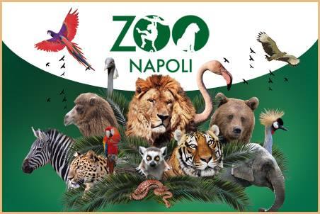 Dove andare il primo maggio con i bambini napoli centro - Immagini di animali dello zoo per bambini ...